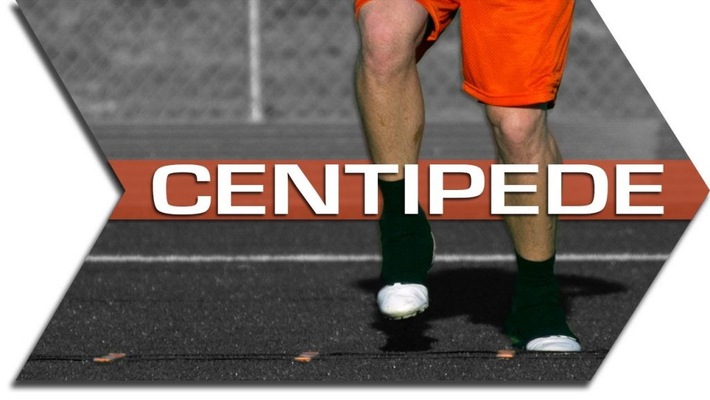 CENTIPEDE – AGILITY LADDER – FOOTWORK, QUICKNESS & SPEED TRAINING DRILL