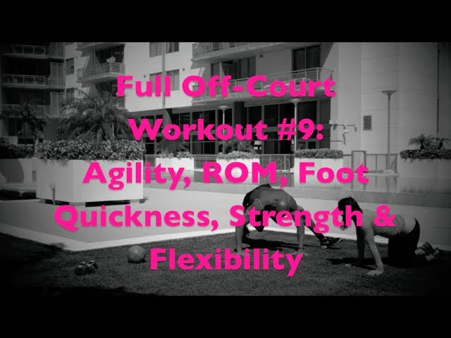 Full Off Court Workout #9: Agility, ROM, Foot Quickness, Strength & Flexibility | @DreAllDay